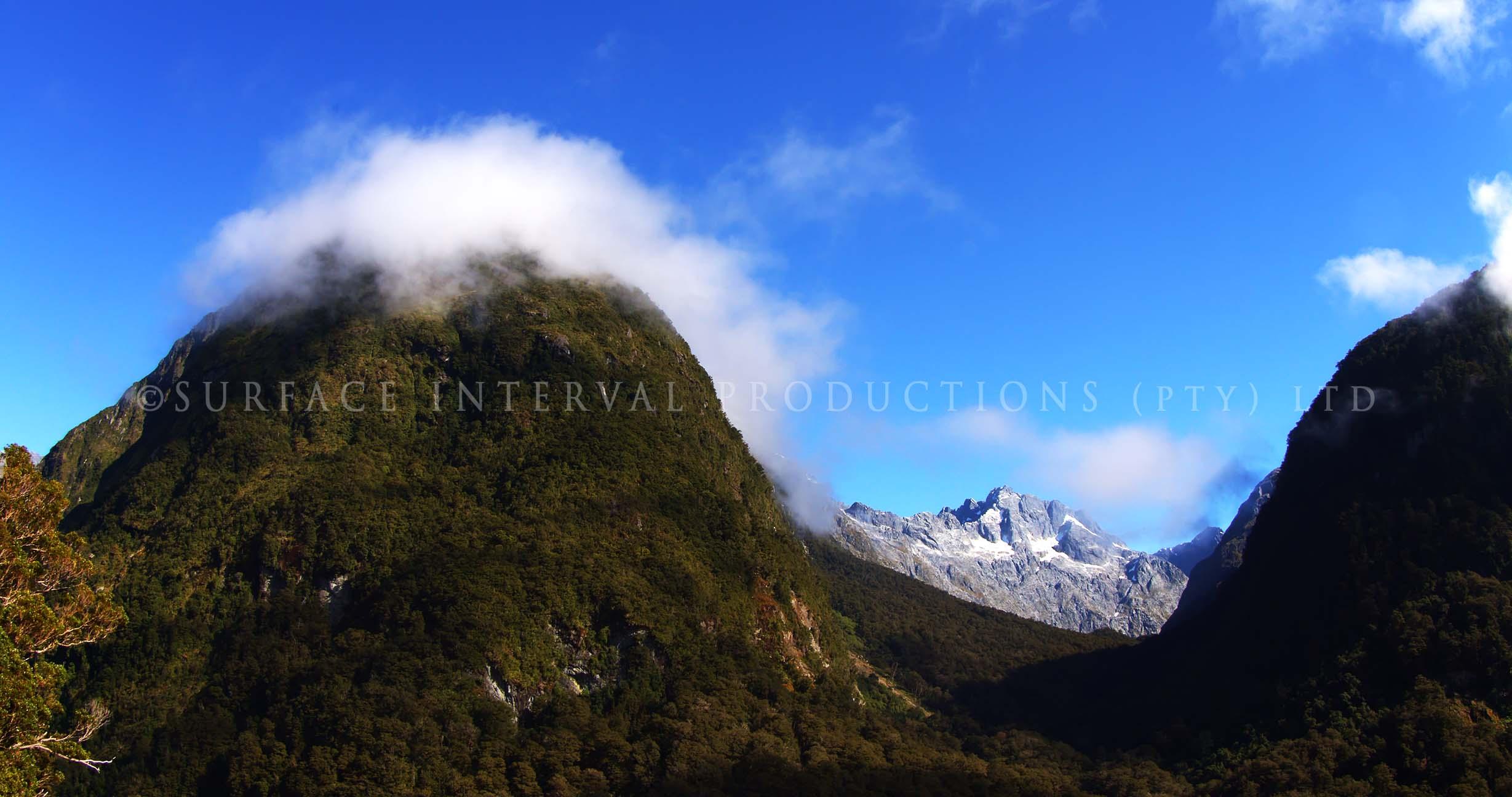 Fiordland 19.jpg