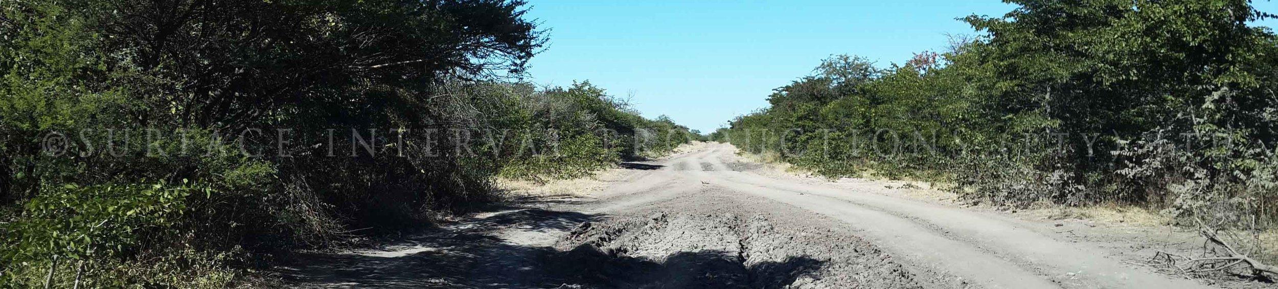 Road 13.jpg