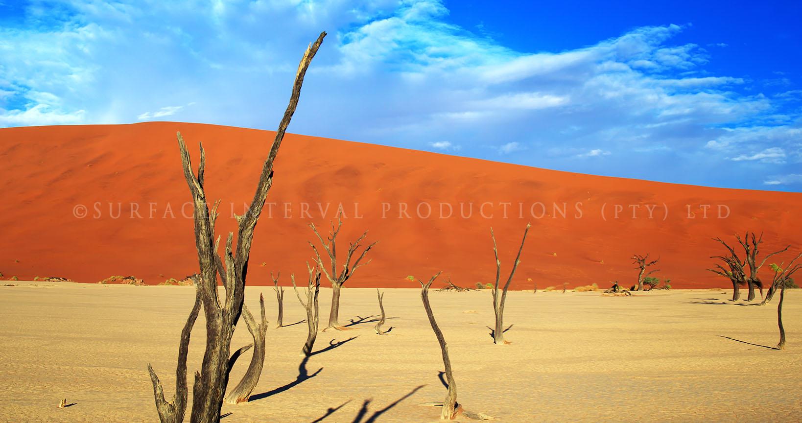 Namib Desert 18.jpg