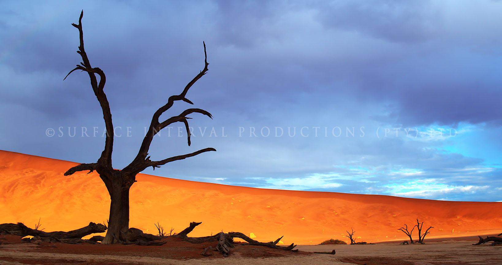 Namib Desert 20.jpg