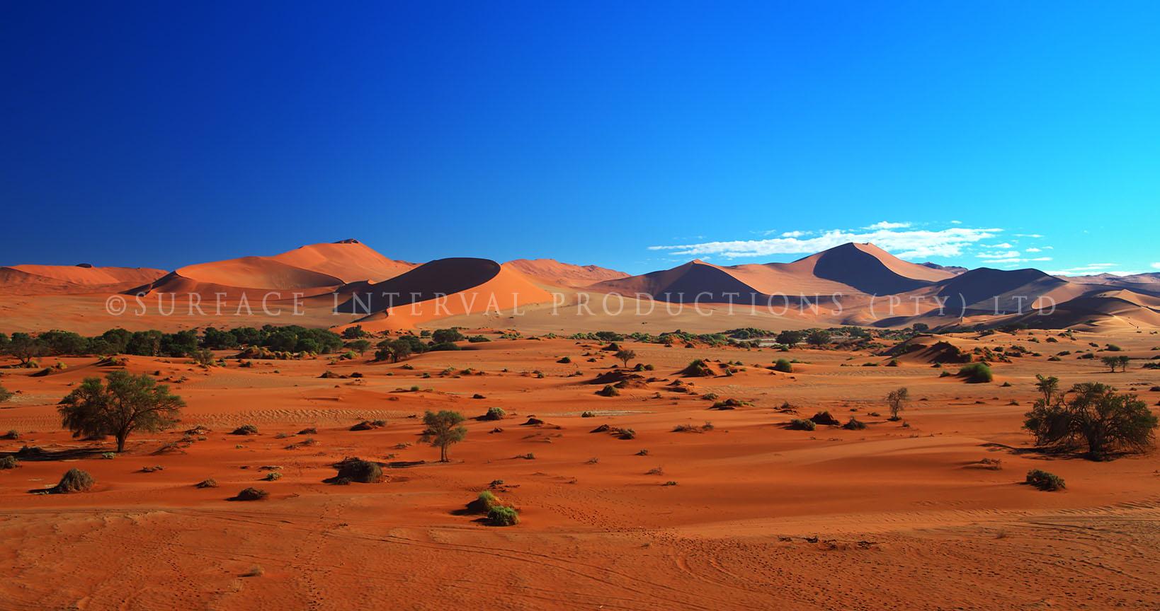Namib Desert 24.jpg