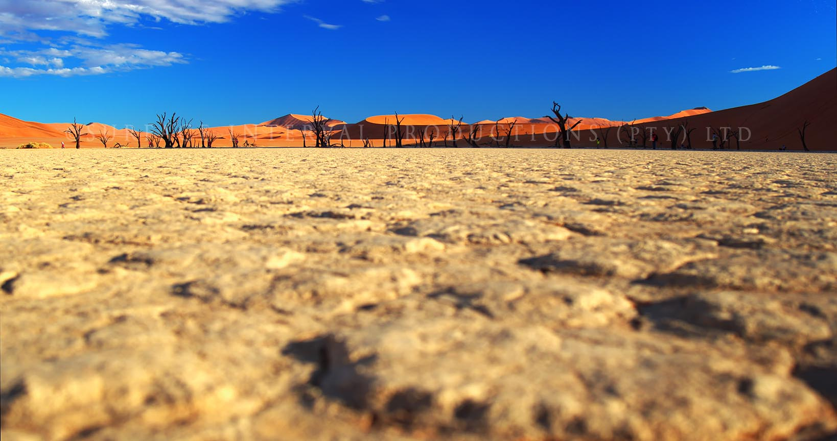 Namib Desert 223.jpg
