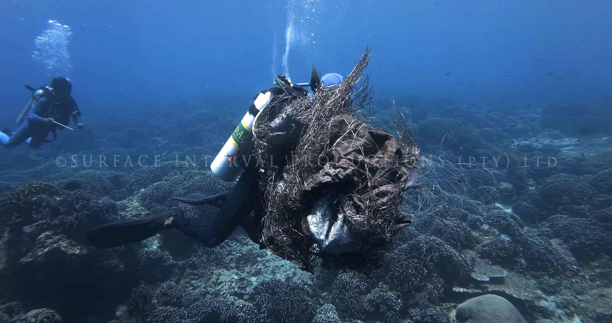Coral Damage 03.jpg