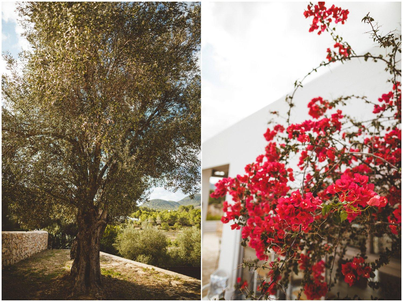Ibiza Wedding Photographer_0084.jpg