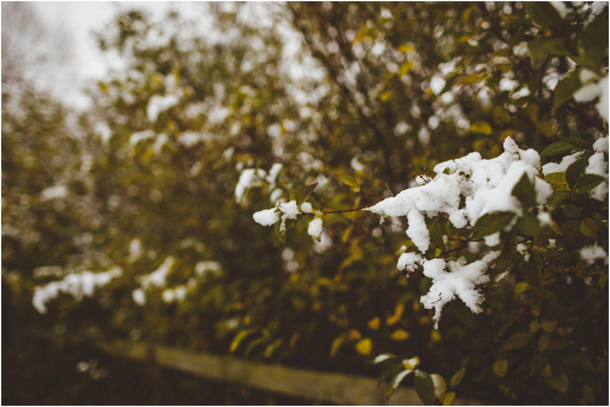 Winter Wedding Newcastle_0002.jpg