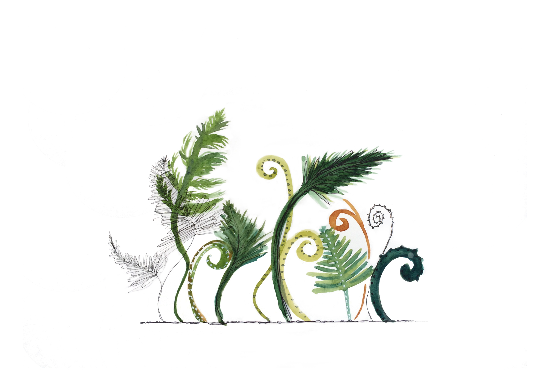Fern Forrest, Watercolor and Ink, 2015