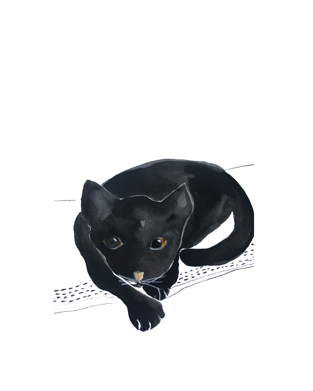 Black Cat, Watercolor, 2017