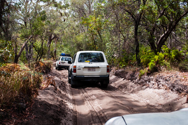 Fraser Island, Australia. November 2012