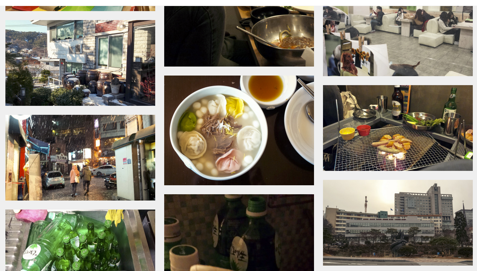 The delicious food, the big snowflakes in Itaewon, the dog cafe, the alcohols.