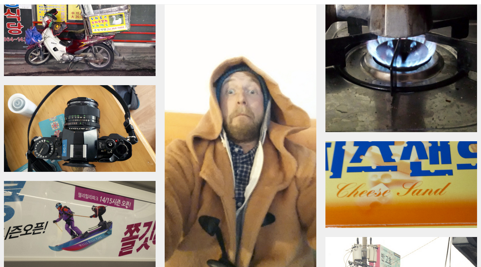The furcoat-selfies, the unfortunate ice-creams, the happy geese.