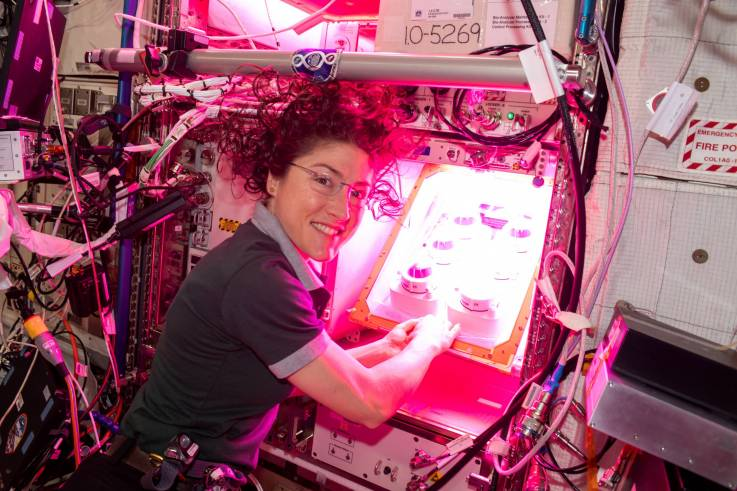 veg-ponds-02-experiment-nasa-iss-astronaut.jpg