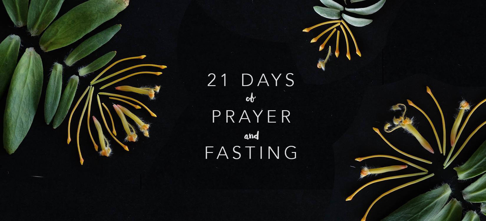 21days(long).jpg