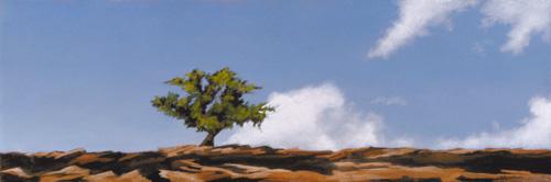 Cedar on the Ridge