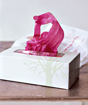 2. tissue box for plastic bags.jpg