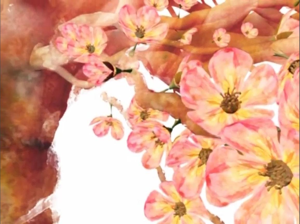 Flowers blooming (2009)