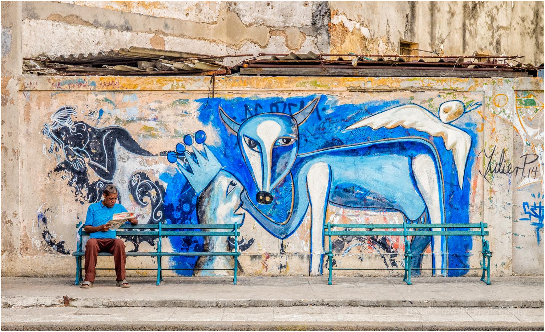 Blue Dog , Havana