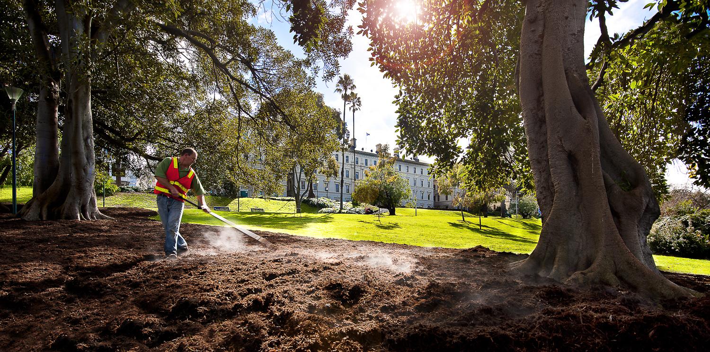 Treasury Gardens Melbourne City