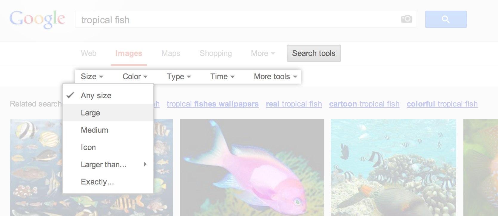 search_tools.jpg