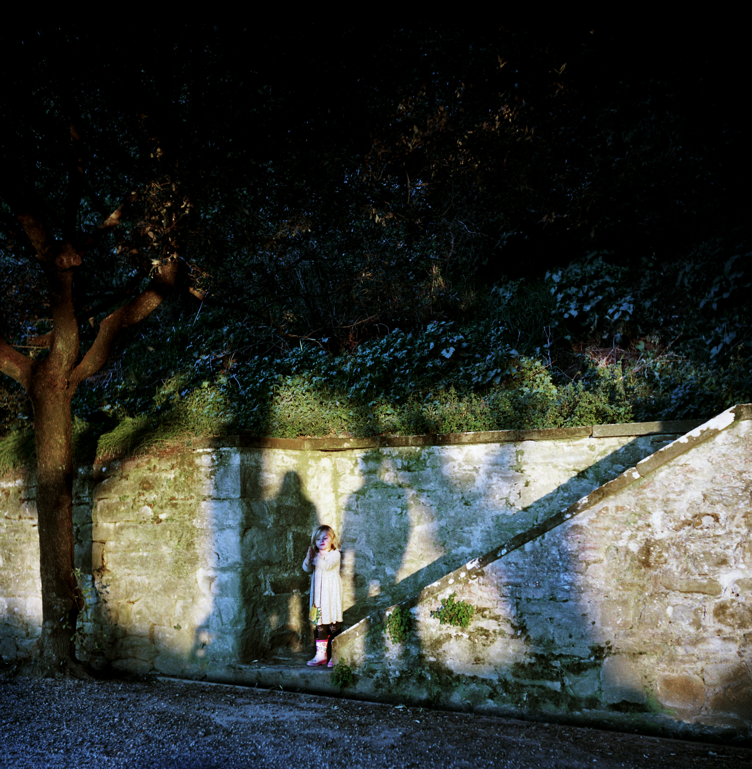 Family Shadows at dusk in the park, Cortona, Italy