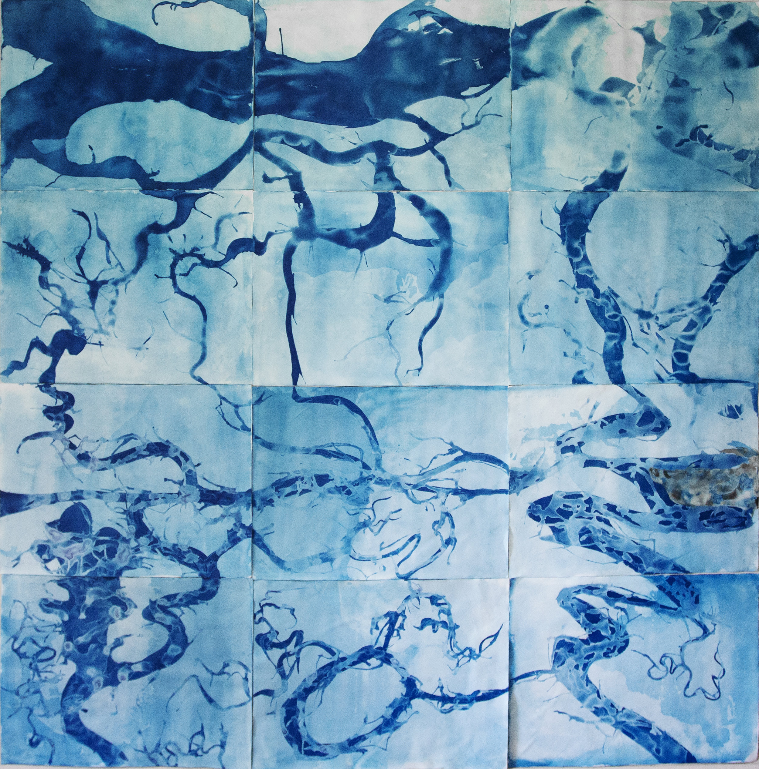 "Marsh Map I, Altamaha Sound, Georgia 2019 (cyanotype on watercolor paper 96""x 96"")"