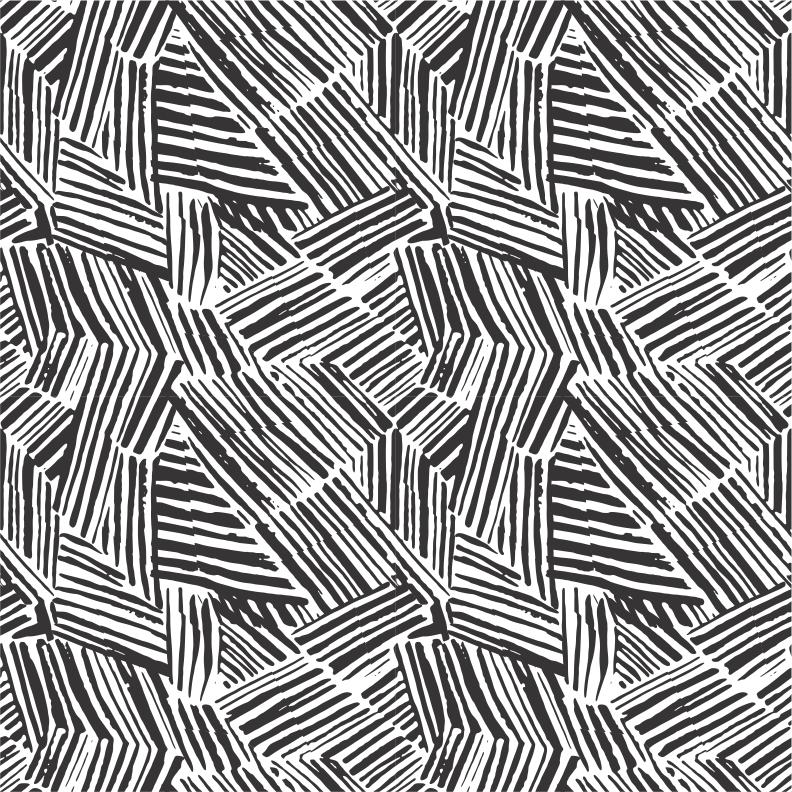 EVA WILLEMS - zebra pattern.png