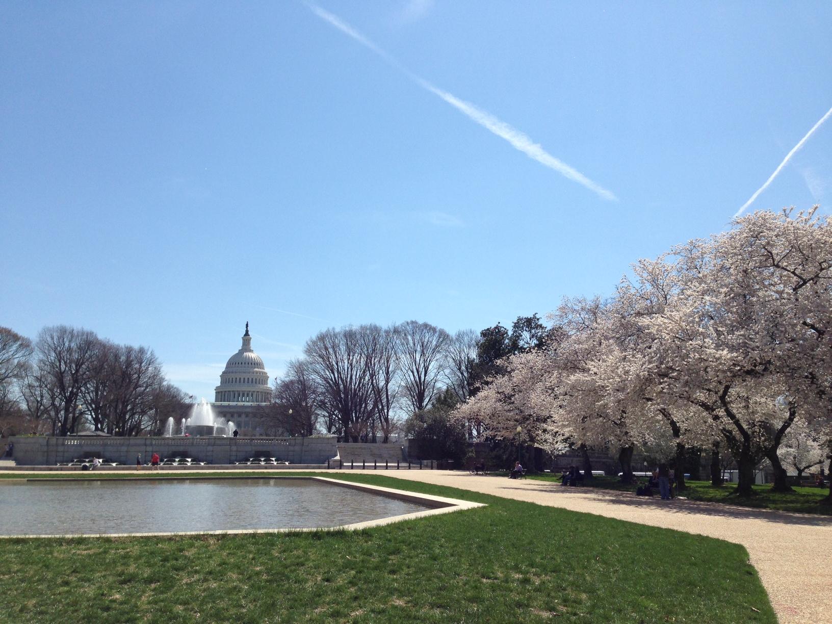 Will springtime inspire comprehensive immigration reform?