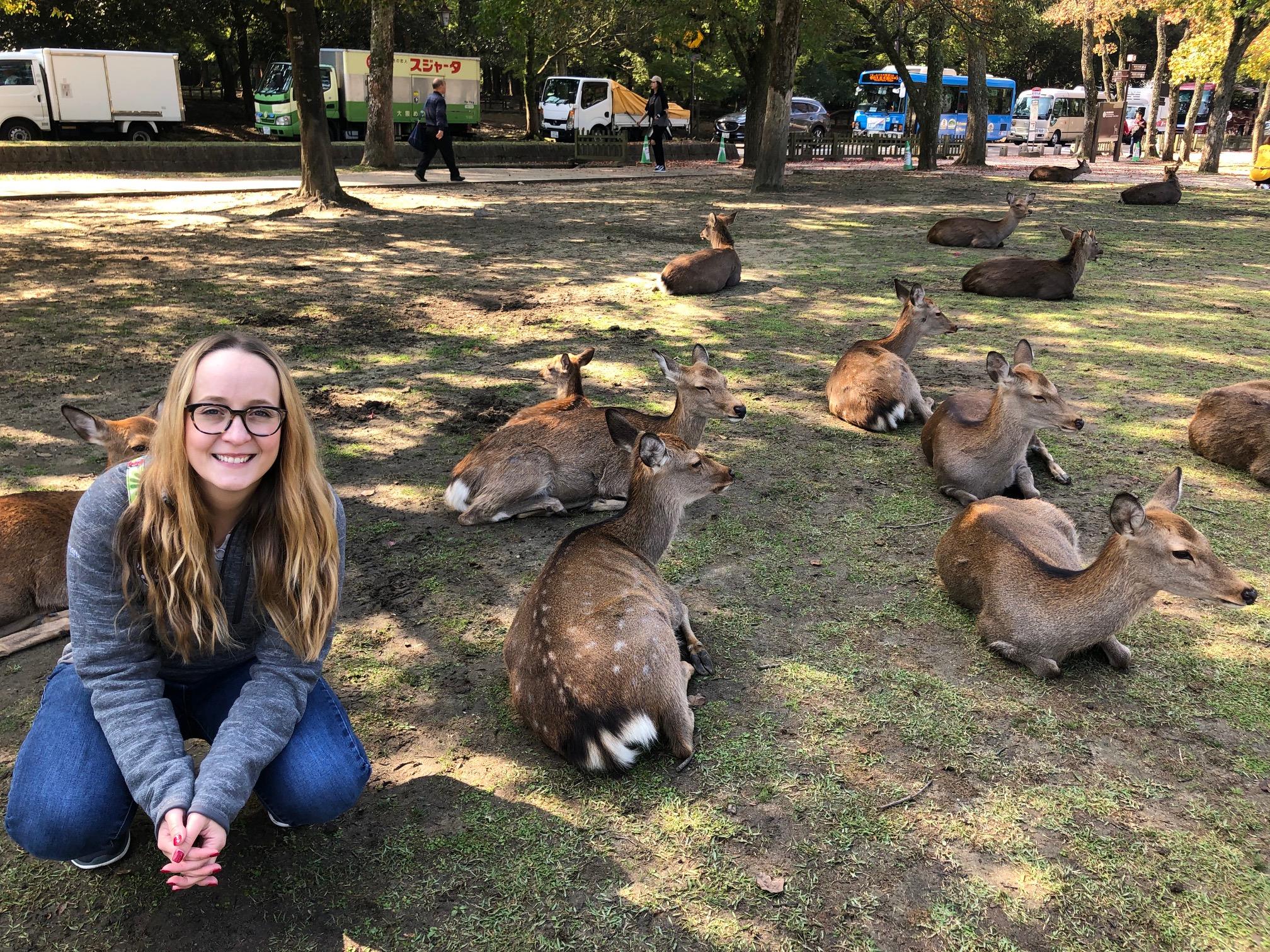 Nara Park Deer.jpeg