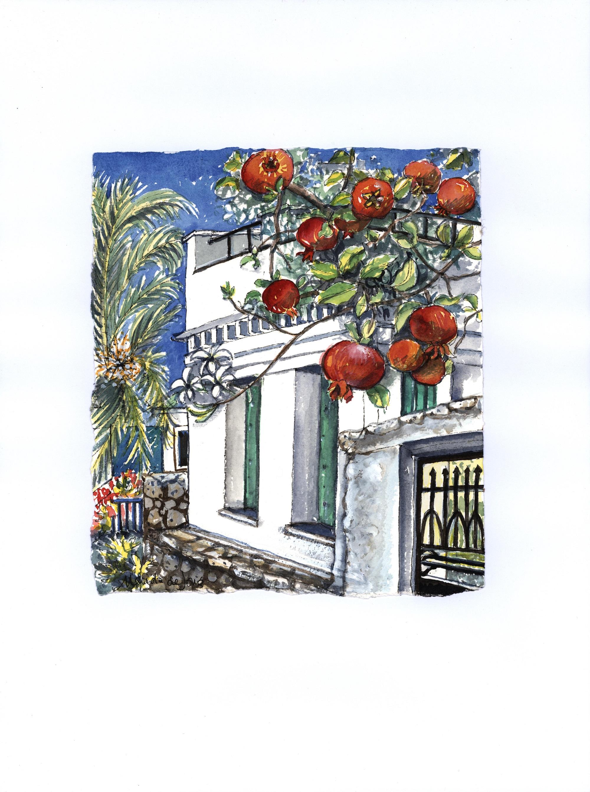 Pomegranates and Palms