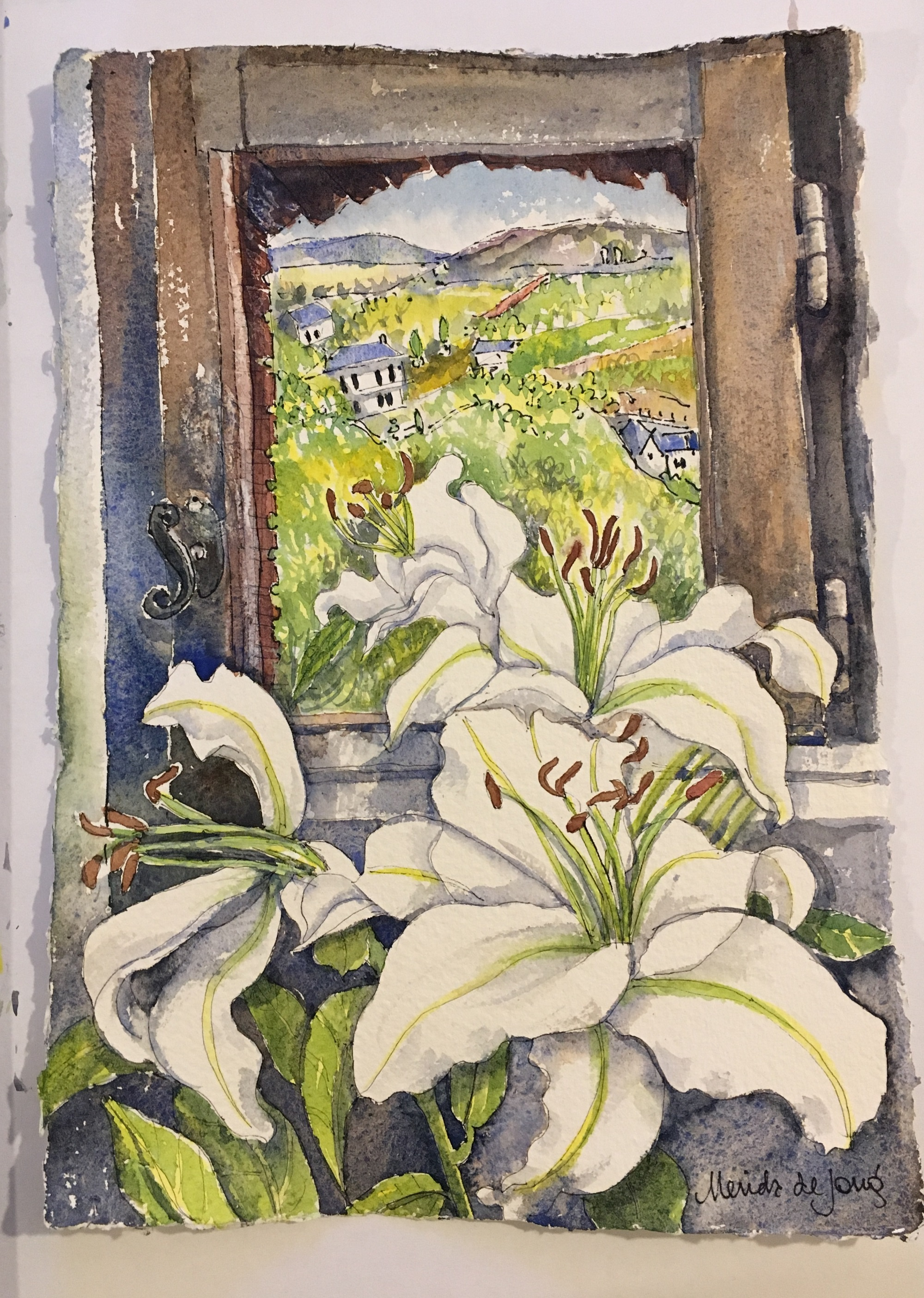 White Lilies at the window