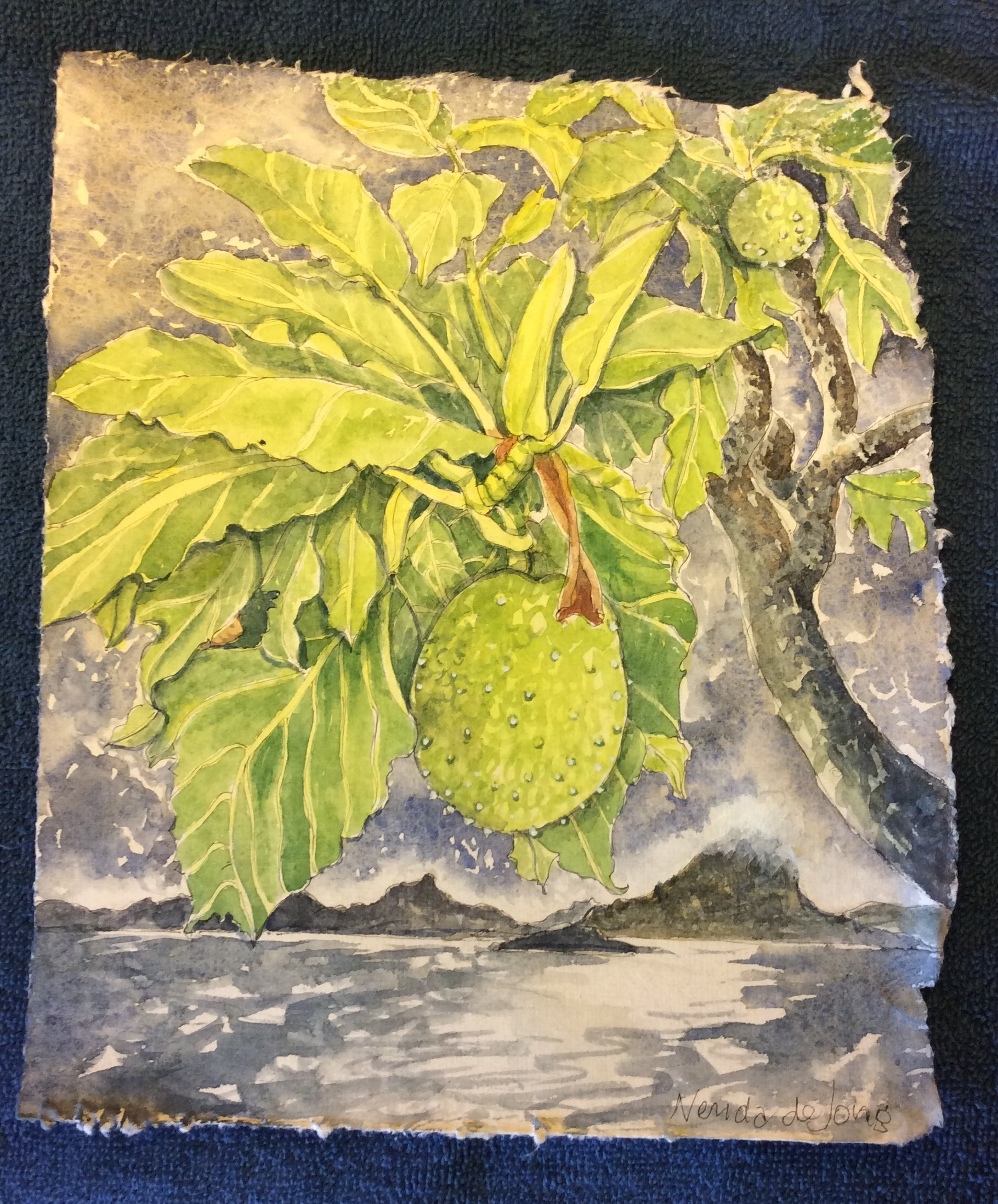 Breadfruit and Bora Bora