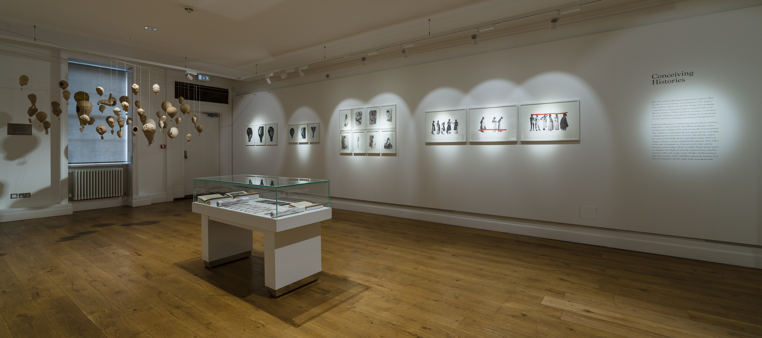 Conceiving Histories exhibition, Peltz Gallery, London, November 2017
