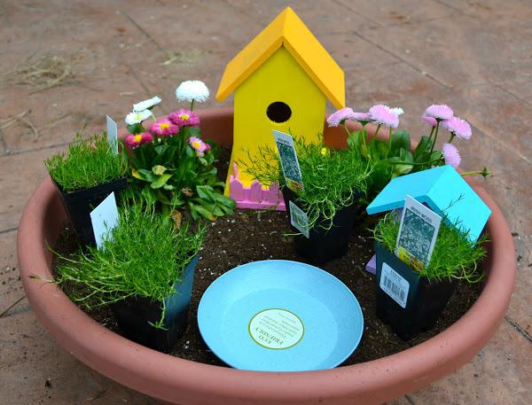 fairy garden 4.jpg
