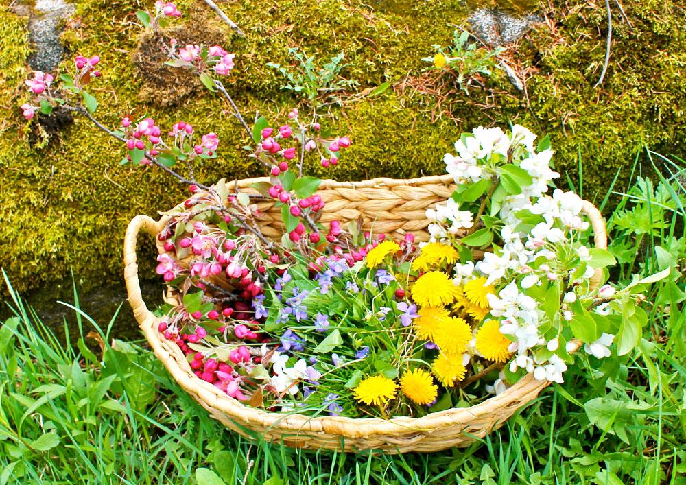 springbracelets_basket_snordholtmcphee.jpg