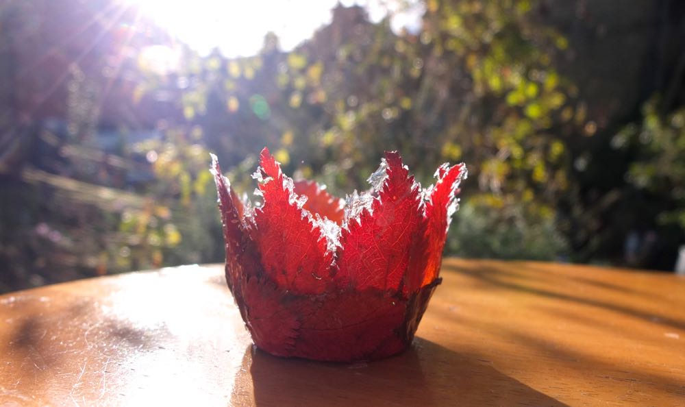 Leaf Bowl How to from Wonder Kids
