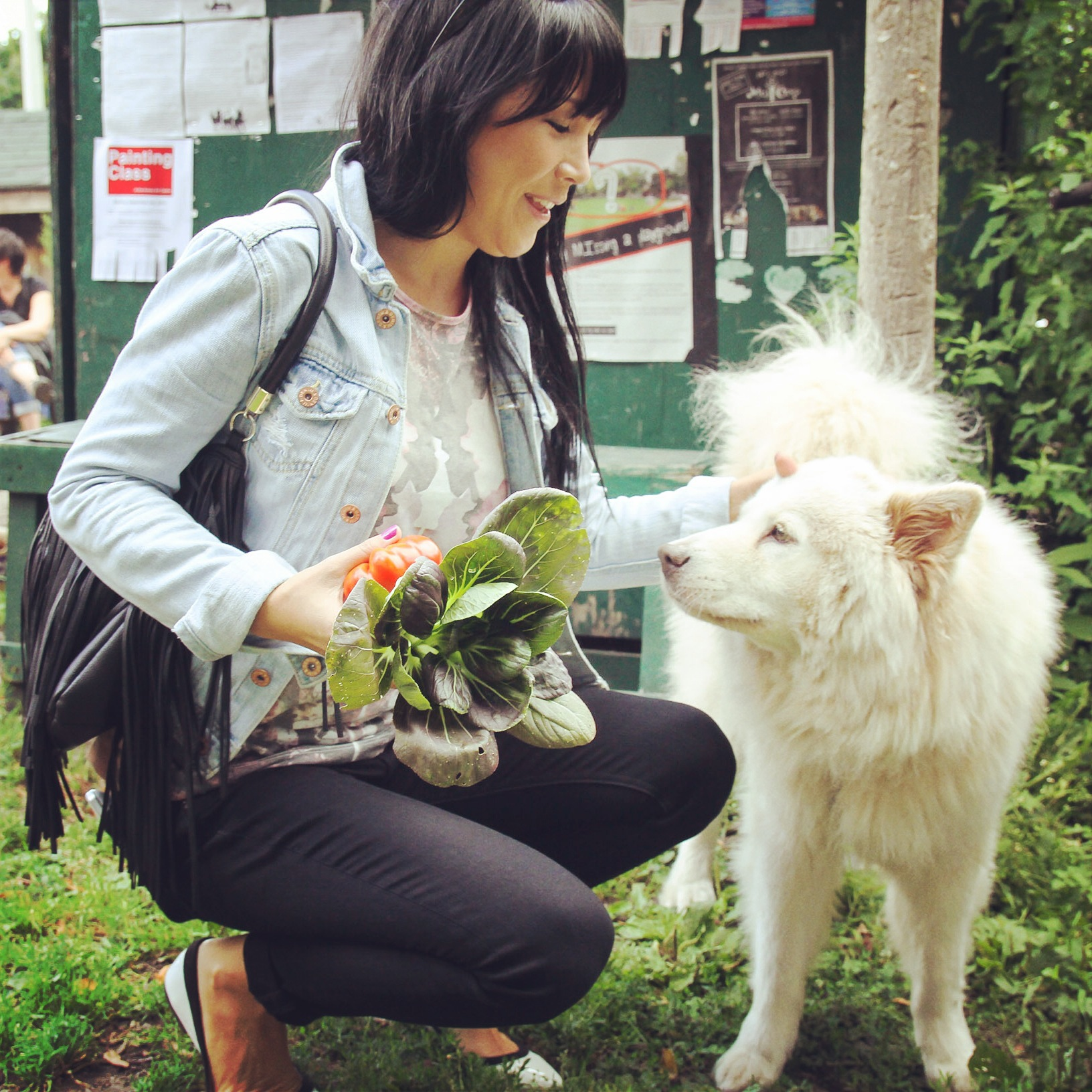 Lauren Toyota talks Veganism | Get Leashed Magazine