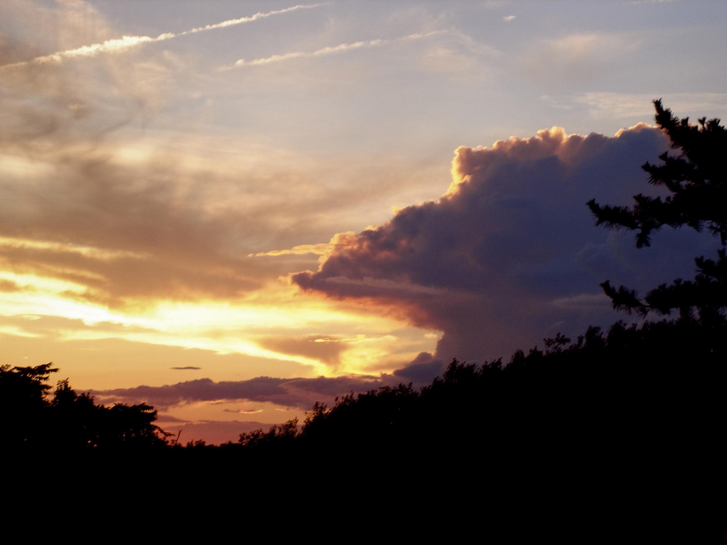 NE_SunsetSkyline_011.jpg