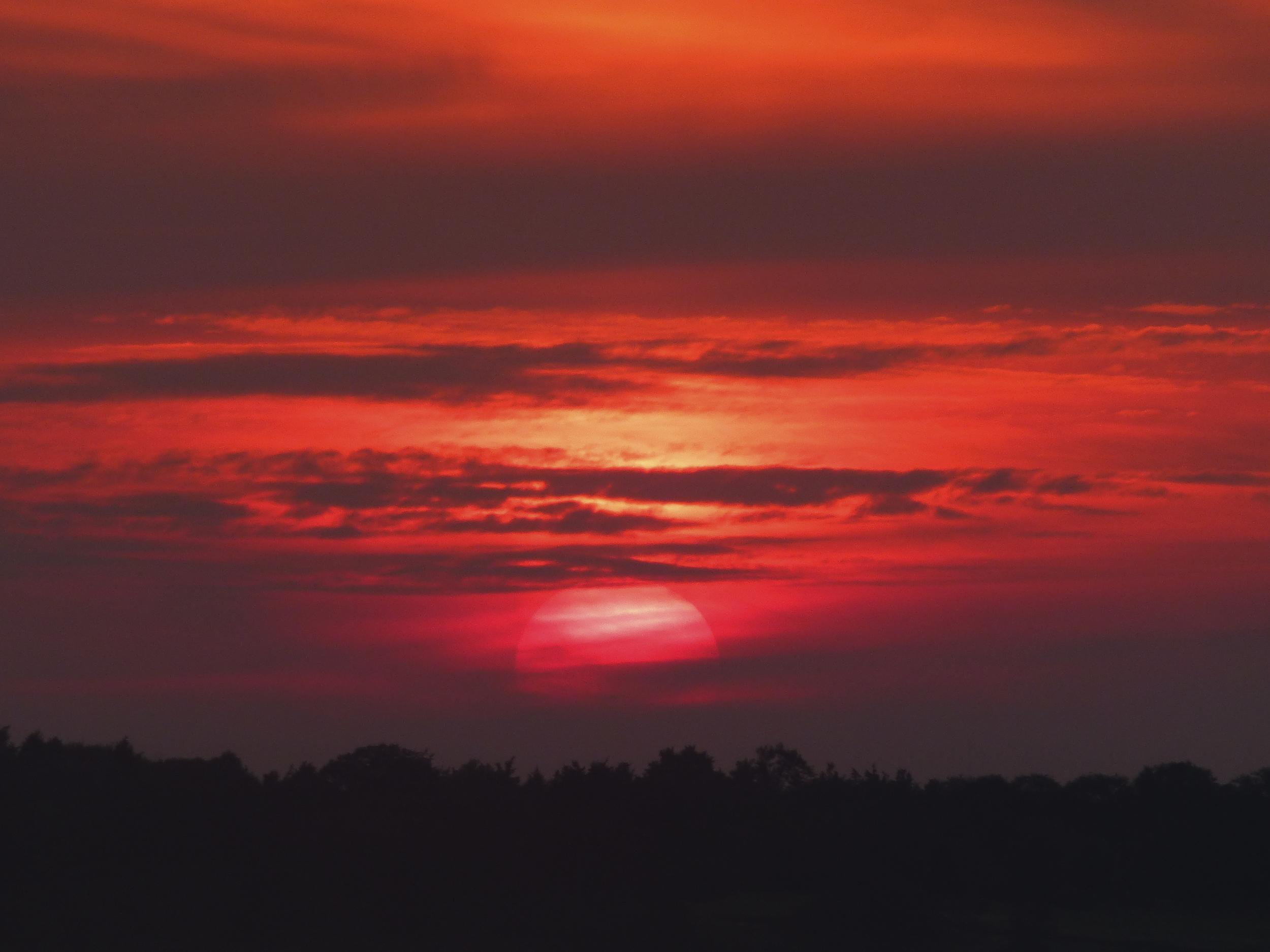 NE_SunsetSkyline_040.jpg