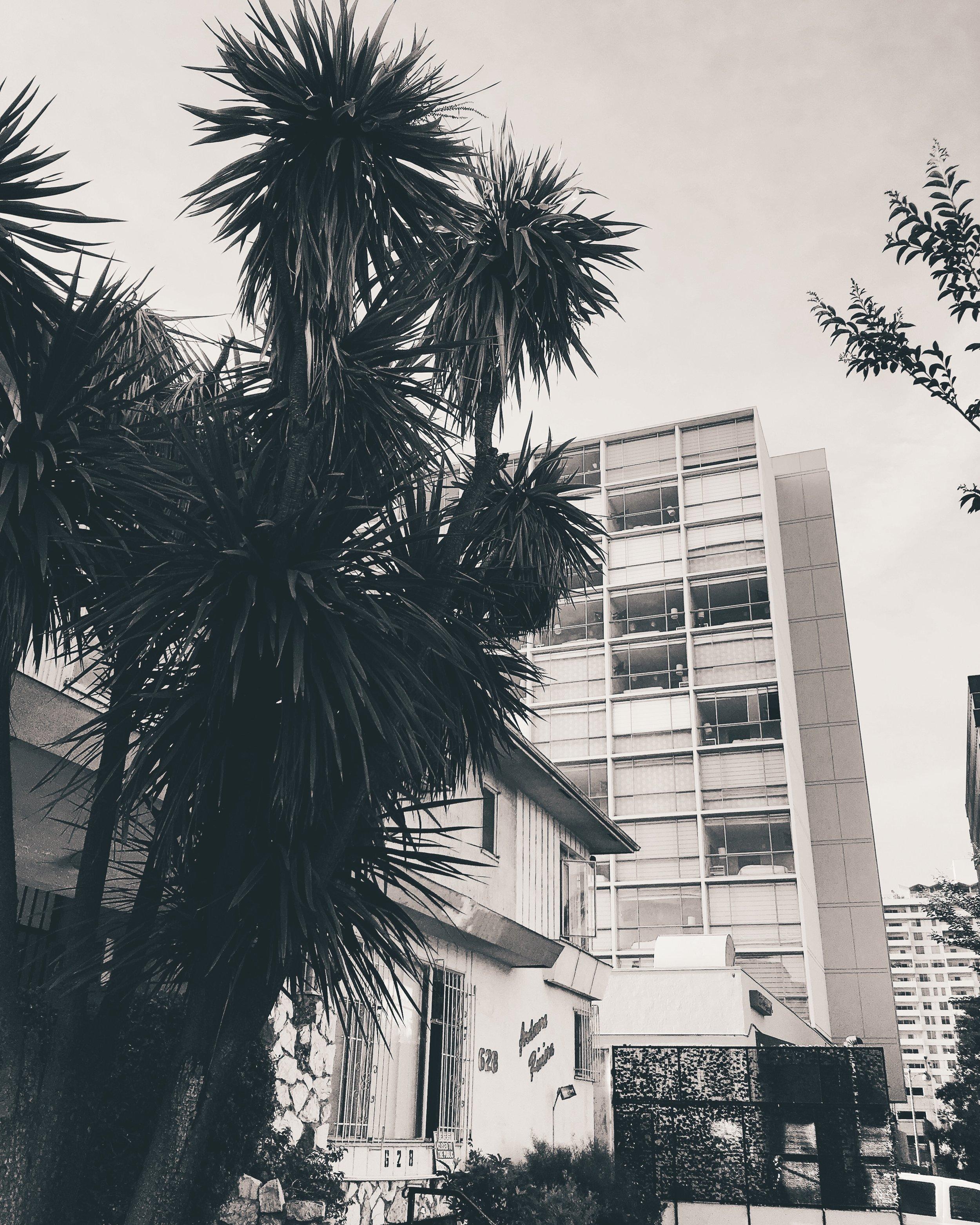 Los Angeles by Liz Gardner