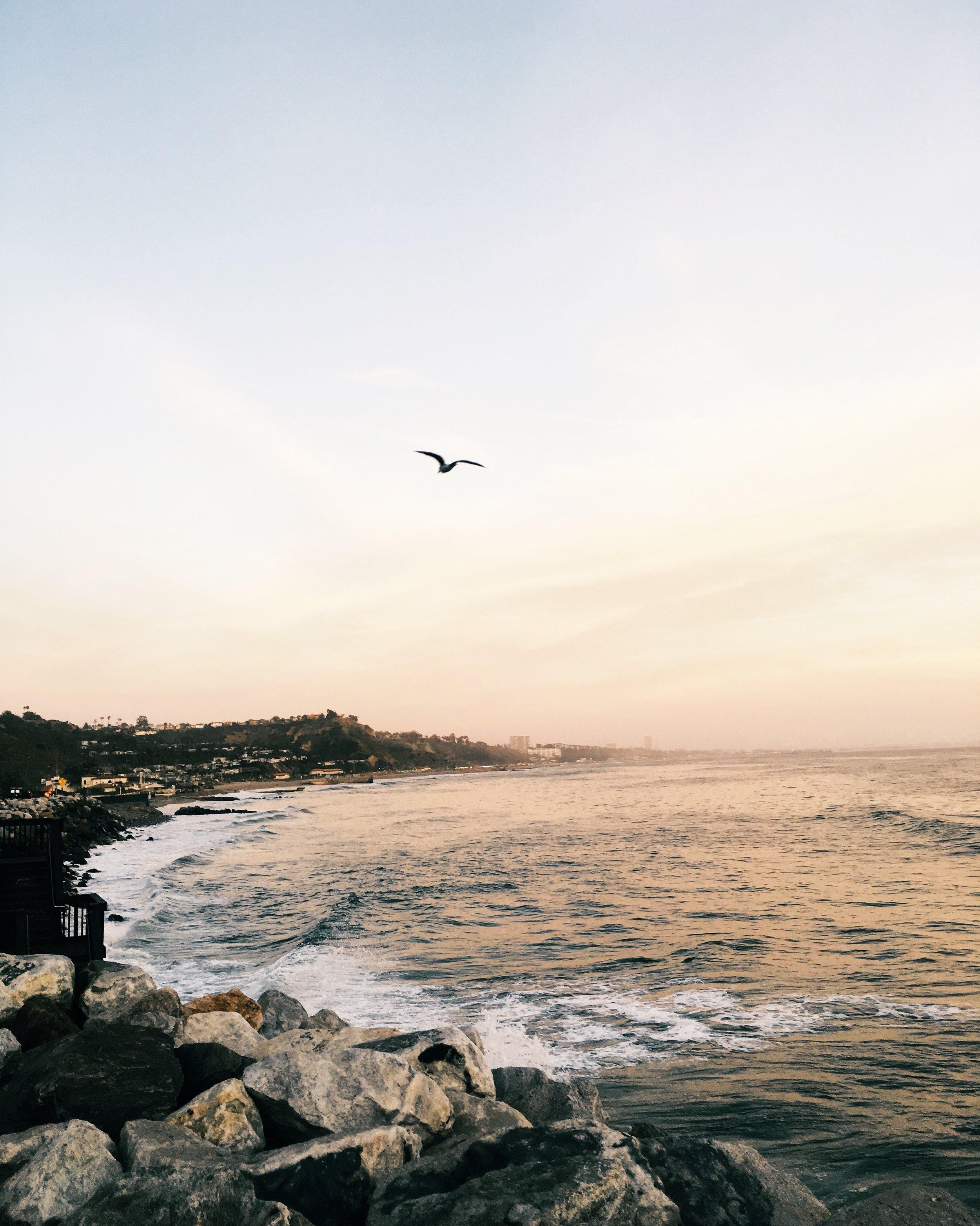 Malibu by Liz Gardner