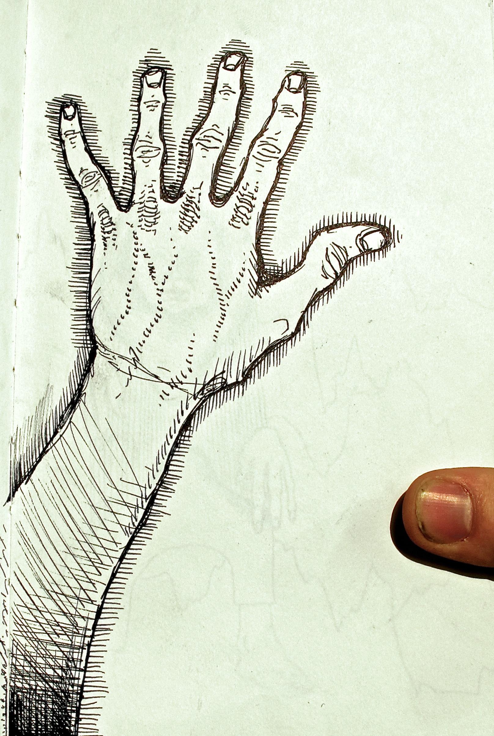 julian sketch.jpg
