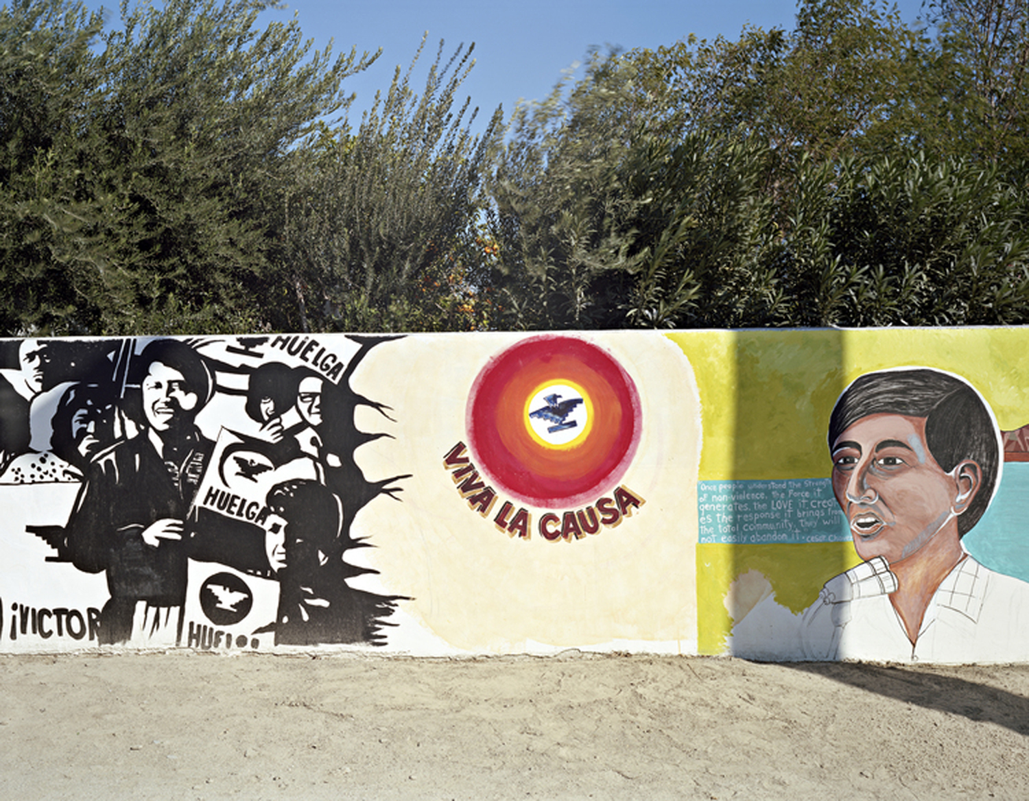 Chicano-Mexicano Historical Timeline, Coachella, CA, 2013    This section of the Shady Lane Mural Project, painted by local artists, depicts Cesar Chavez (1927-1993), an American labor leader and civil rights activist who helped found the United Farm Workers Union.  Chavez led a struggle for fairness and dignity that included marches, boycotts, and hunger strikes as non-violent means to highlight the plight of migrant agricultural workers.  His actions also focused attention on health issues and the dangers of pesticides.  A nationwide upsurge of cultural pride and political action by Latinos are a major part of the Chavez legacy.