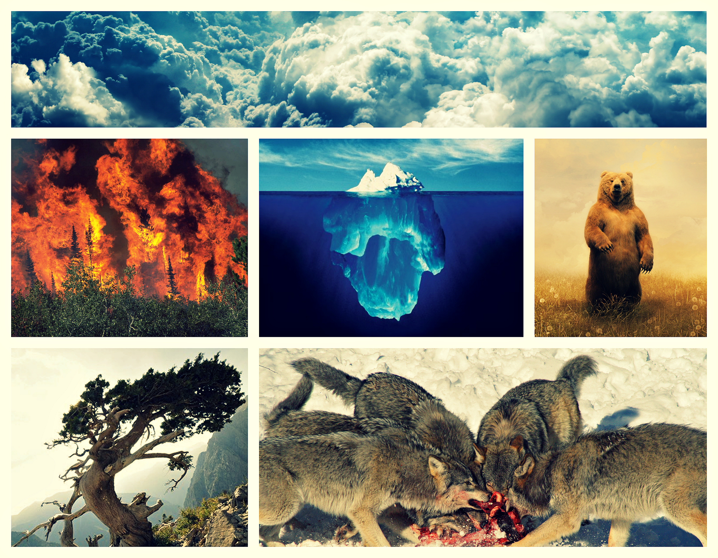 Inspirations from Nature