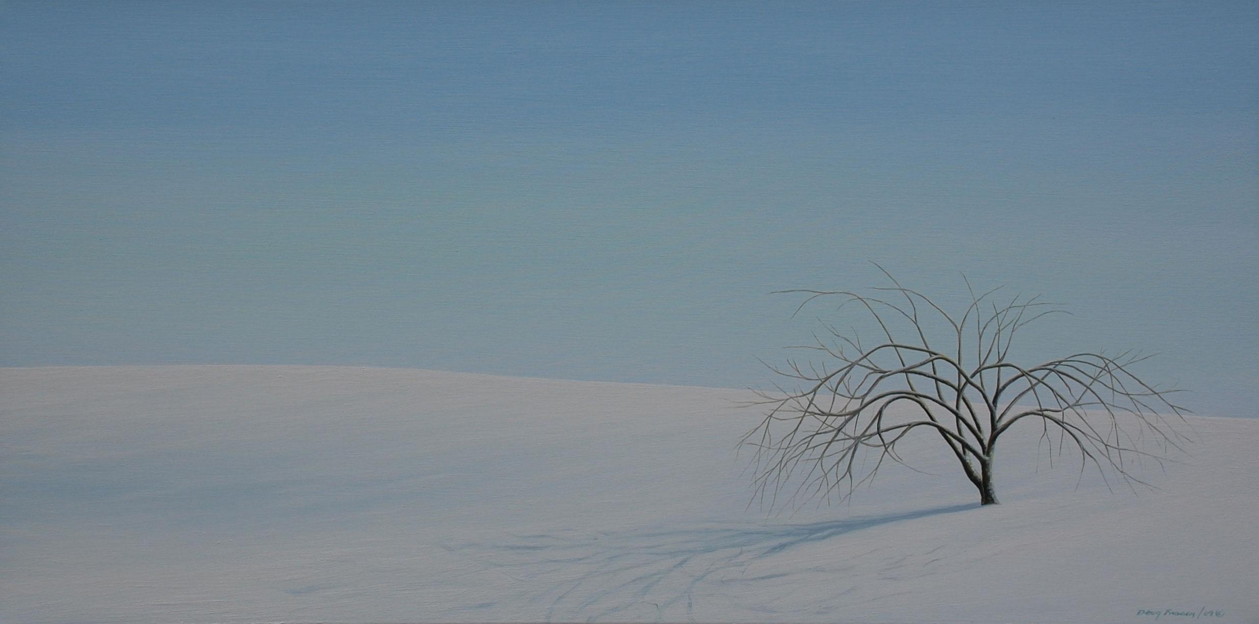 Winter-Reflections.jpg