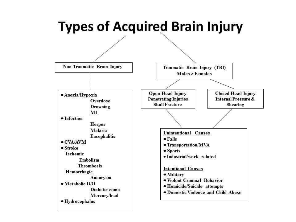 Head injury of types 4 Types