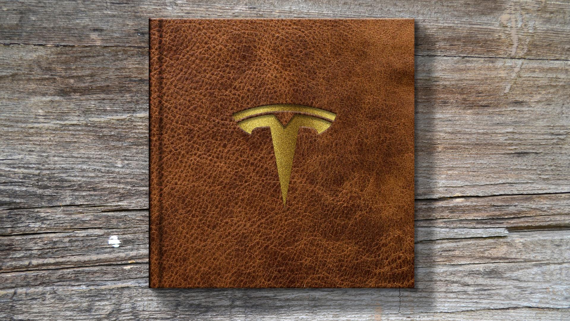 ACG Tesla-foredrag