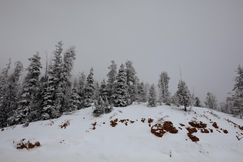 03_winter_desert_snow_zoeburchardstudio_utah_zoeburchard_elopement_redrocks_elopementphotographer.jpg