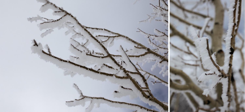 05_winter_desert_snow_zoeburchardstudio_utah_zoeburchard_elopement_redrocks_elopementphotographer.jpg
