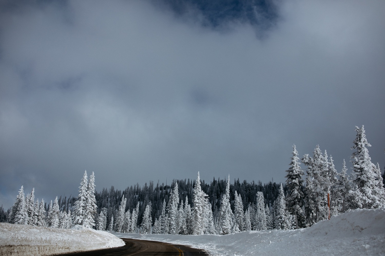 07_winter_desert_snow_zoeburchardstudio_utah_zoeburchard_elopement_redrocks_elopementphotographer.jpg