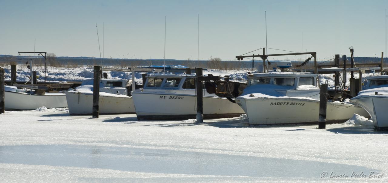Winter on Kent Island, Maryland © Lauren Peeler Brice, Four Rivers Photo Workshops