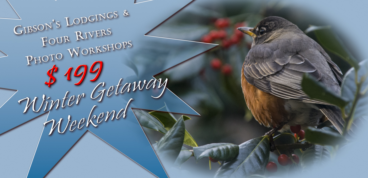 Special: Winter Getaway Weekend and Photo Workshop, Gibson's Lodgings and Four Rivers Photo Workshops